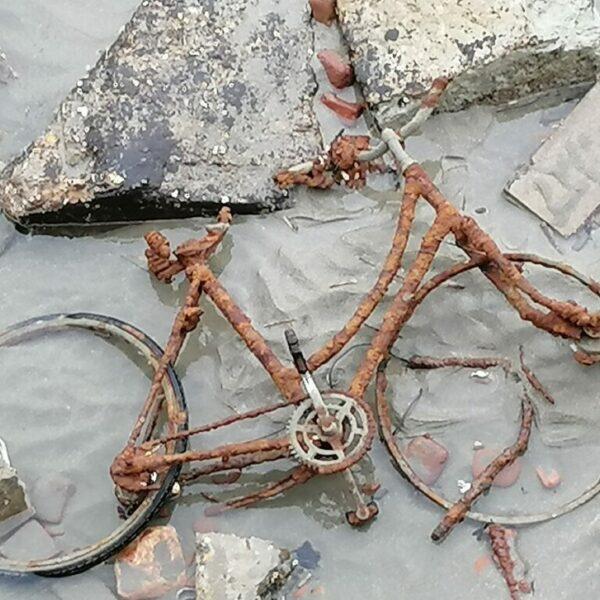 Inge Jochem - fiets bij eb