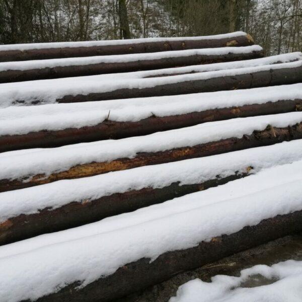 Inge Jochem - sneeuw op hout